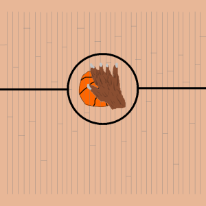 teen wolf basketball court paw